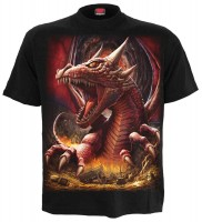 Awake The Dragon T-Shirt schwarz