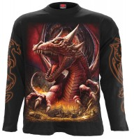 Awake The Dragon Longsleeve schwarz (AUSLAUFARTIKEL)