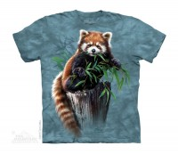 Bamboo Red Panda Kinder T-Shirt