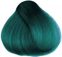 Hermans Amazing Tammy Turquoise