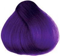 Hermans Amazing Patsy Purple