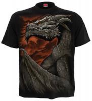 Majestic Draco T-Shirt schwarz