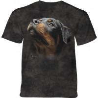Angel Face Rottie Pet Dog T-Shirt